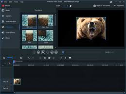ACDSee Video Studio serial key